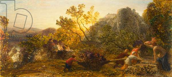 Harvest in the Vineyard, 1859 (w/c, gouache and gum arabic on paper)