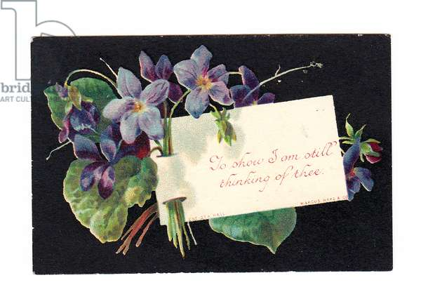 A Victorian greeting card of a bunch of violets against a black background, c 1880 (colour litho)