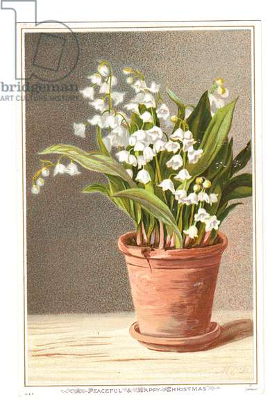 A Victorian Christmas card of lily of the valley in a clay pot, c.1880 (colour litho)