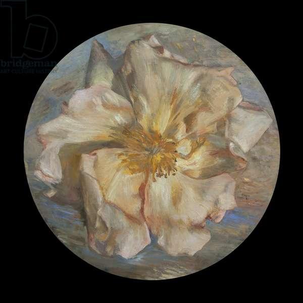 Solar Rose, 2011 (oil on canvas)