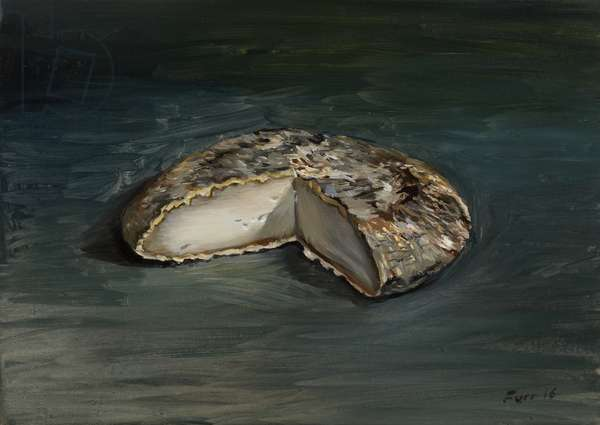 Gouda Gold on Lautreamont Green, 2016 (oil on wood)