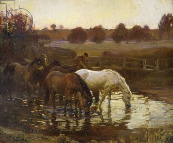 Watering, 1910 (oil on canvas)