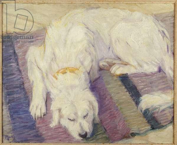 Sleeping Dog, 1909 (oil on canvas)