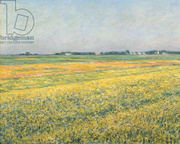 The Plain of Gennevilliers, Yellow Fields; La plaine de Gennevilliers, champs jaunes, 1884 (oil on canvas)