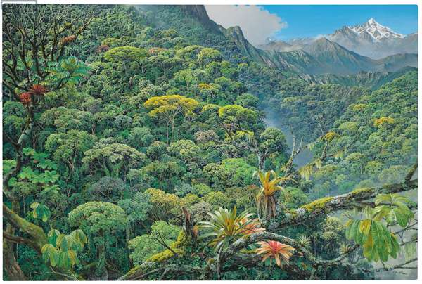 Amazon Jungle Meets the Andes, 2009 (acrylic on canvas)