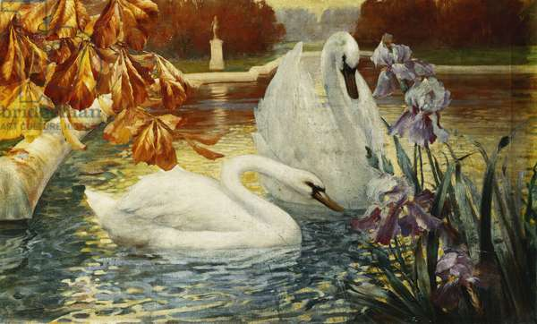 Swans on a Lake, (oil on canvas)