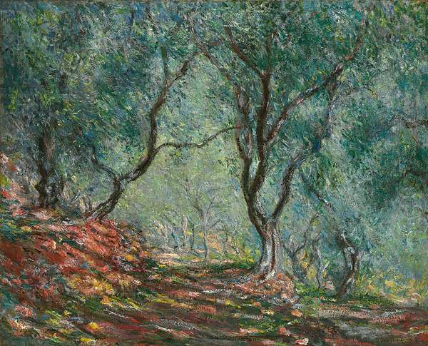 Olive Trees in the Moreno Garden, 1884 (oil on canvas)