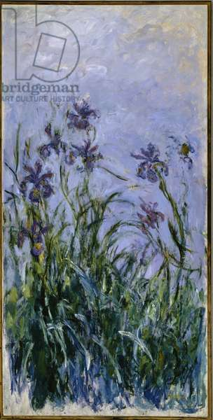 Purple Irises, 1914-17 (oil on canvas)