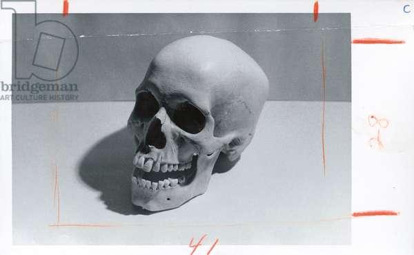 Skull, c.1976 (gelatin silver print)