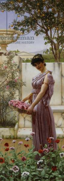 The Flowers of Venus, 1890 (oil on canvas)