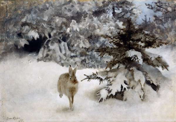 A Hare in the Snow, 1927 (oil on canvas)