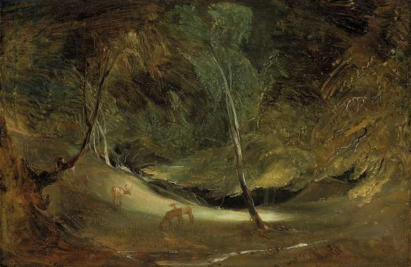 The Source of the Manifold at Ilam Park (oil on paper, laid down on canvas)