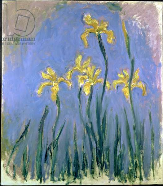 Yellow Irises; Les Iris Jaunes, c.1918-1925 (oil on canvas)