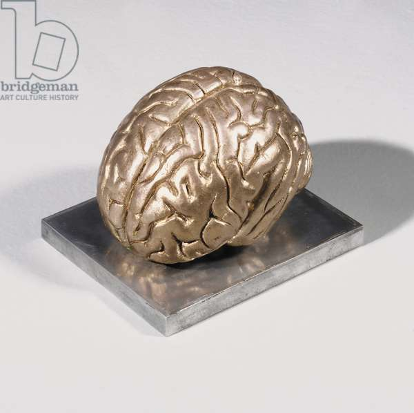 Silver Brain, 1964 (plaster with silver leaf)
