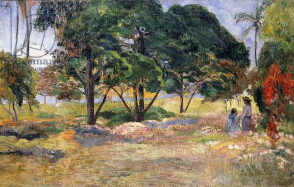 Landscape with Three Trees, 1892 (oil on canvas)