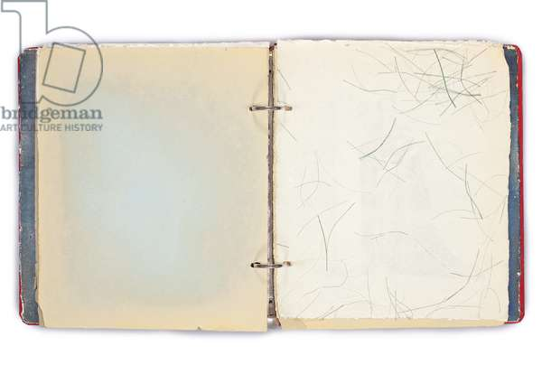 Page from 'Untitled (Scrapbook for Tamara Toumanova)', c.1953 (mixed media)