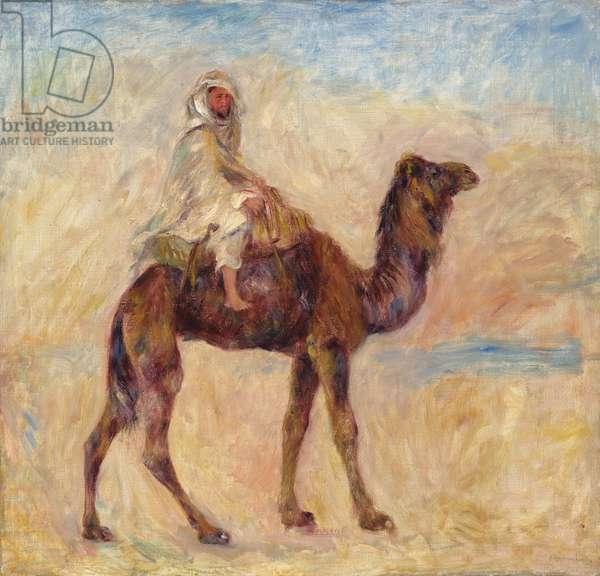 A Camel; A Dos de Chameau, 1881 (oil on canvas)