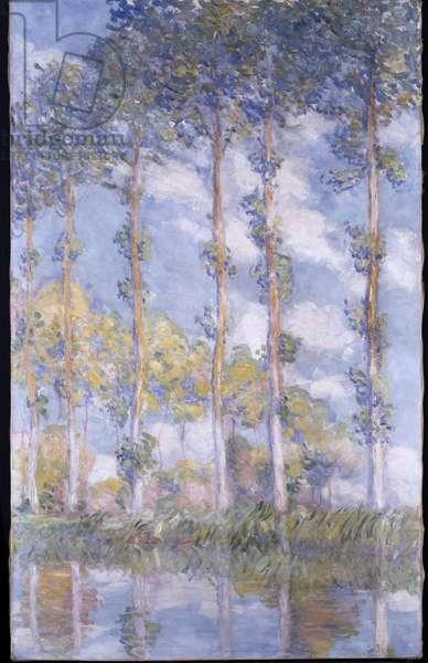 The Poplars, 1881 (oil on canvas)