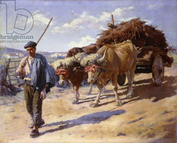 Peasant with his Bullock Cart, Ascain, 1899 (oil on canvas)