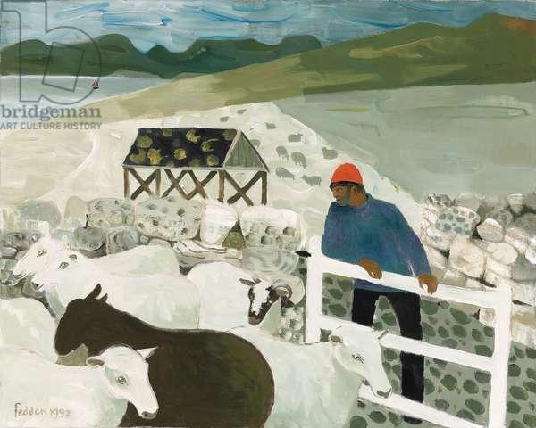 Highland Sheep, 1992 (oil on canvas)