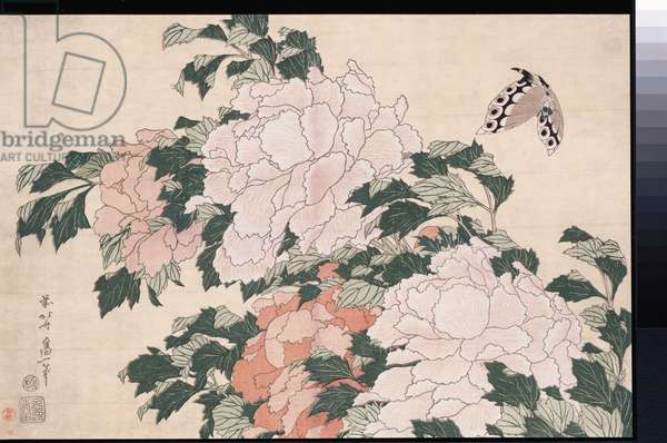 Pink and Red Peonies Blown to the Left in a Breeze and a Butterfly (woodblock print)