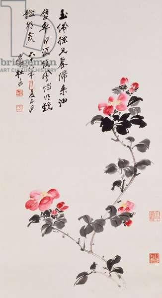 Camellias, 1977 (scroll, ink and  colour on paper)