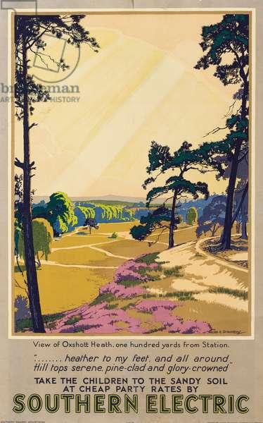 Oxshott Heath, poster advertising Southern Electric Railways, 1932 (colour litho)