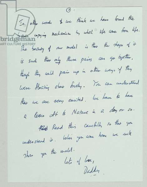 Autograph letter outlining the discovery of the structure and function of DNA, Cambridge, 19th March 1953 (pen & ink on paper) (see also 742024 and 808636-42)