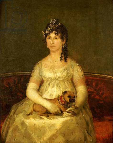 Portrait of Dona Francisca Vicenta Chollet y Caballero, seated, three-quarter length, with a lap dog, 1806 (oil on canvas)