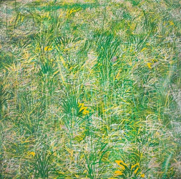 Grass (oil on canvas)