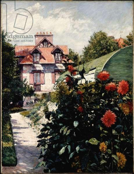 The Dahlias, Petit Gennevilliers Garden, 1893 (oil on canvas)
