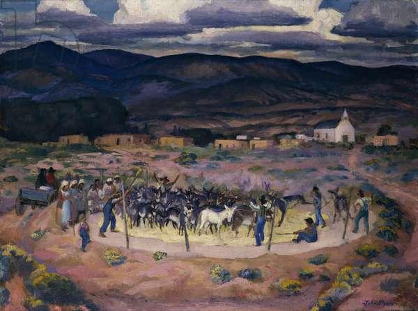 Burros Threshing, (oil on canvas)