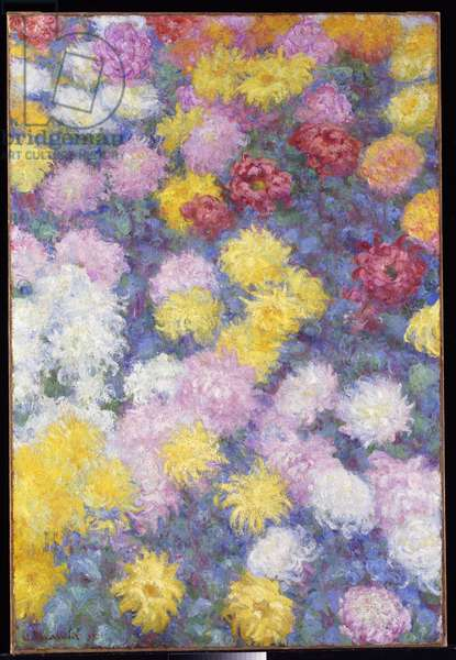 Chrysanthemums, 1897 (oil on canvas)