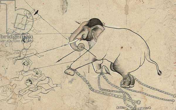 Isarda or kotah preparatory drawing of the taming of an elephant, c.1720 (ink & gouache on paper)
