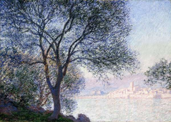Antibes seen from the Salis, 1888 (oil on canvas)