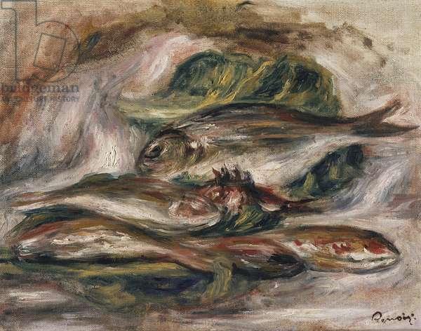 Fish, c.1919 (oil on canvas)