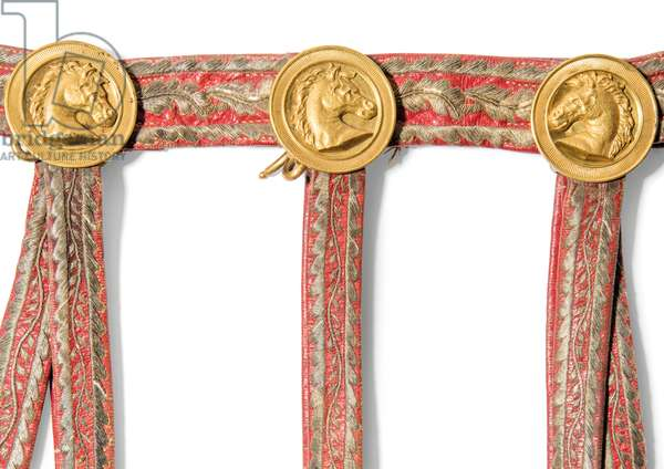 Detail from the Sabretache of Joseph-Napoleon Bonaparte, King of Spain, before 1813 (red morocco leather with embroidered goldwork & gilt-brass mounts)
