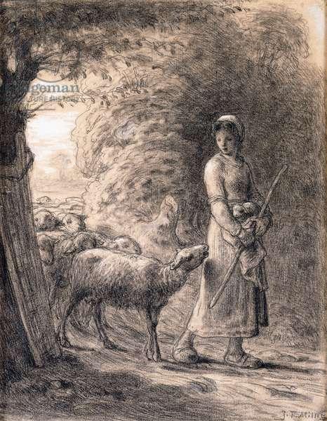 The Newborn Lamb, c.1860 (black nd white chalks on paper)
