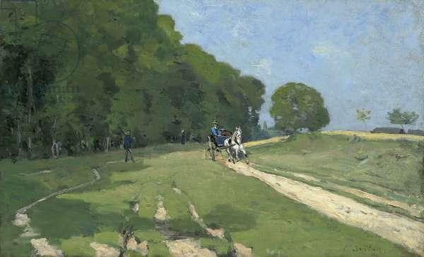 Path Near the Parc de Courances; Chemin pres du Parc de Courances, 1868 (oil on canvas)