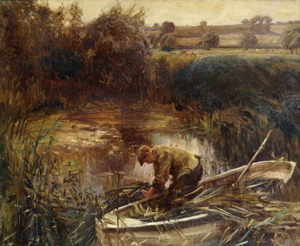 Cutting Reeds, 1908 (oil on canvas)
