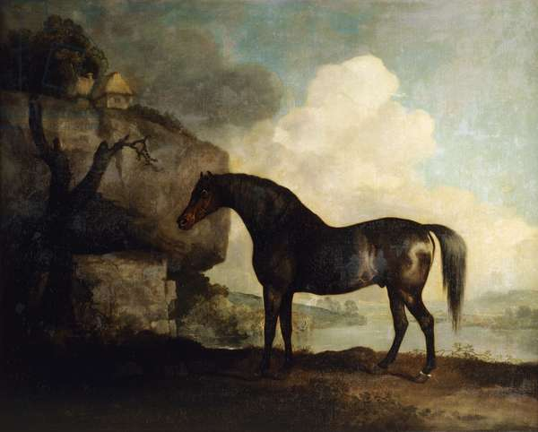 Marske' (oil on canvas)