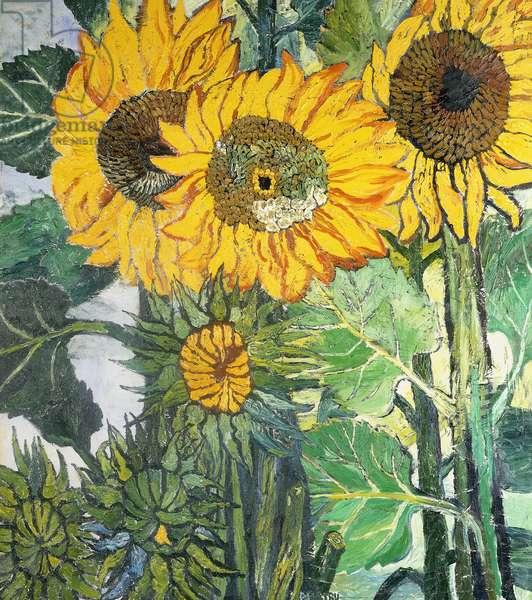 Sunflowers I, (oil on canvas)