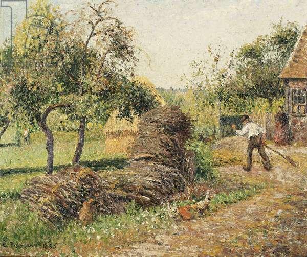 Court of the Mother Lucien, Eragny; La Cour de la Mere Lucien, Eragny, 1895 (oil on canvas)