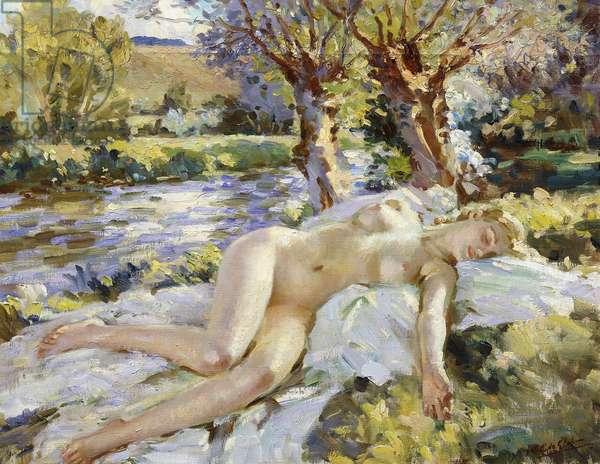Summer on the Avon, (oil on canvas)