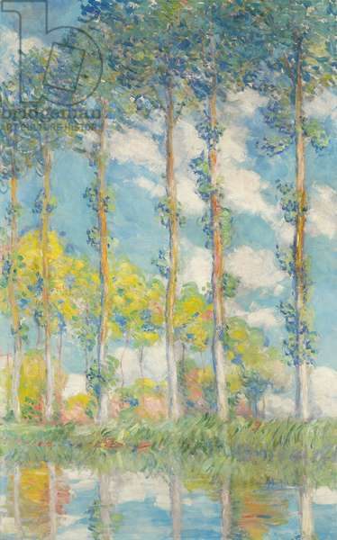 The Poplars; Les Peupliers, 1891 (oil on canvas)
