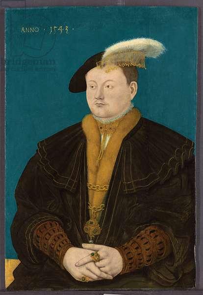 Portrait of Friedrich Magnus I von Solms-Laubach, 1543 (oil on panel)