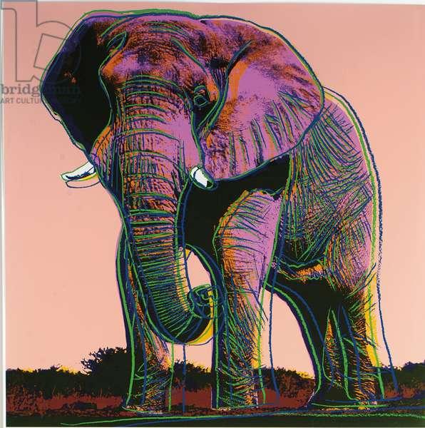 African Elephant, 1983 (screenprint)