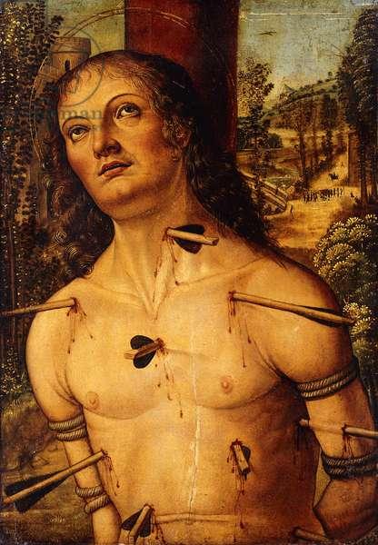Saint Sebastian,  (oil on panel)