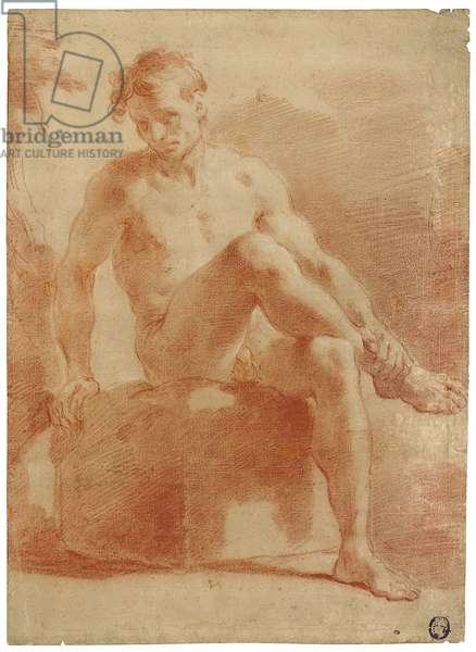 A seated male nude (red & white chalk on paper)