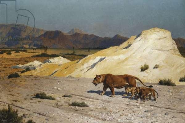 Lioness and Cubs; Lionne et Lioceaux,  (oil on canvas)